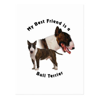 Best Friend Bull Terrier Postcard