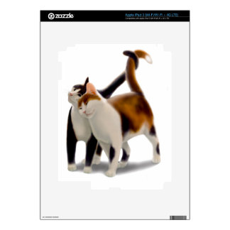 Best Friend Cats Zazzle Skin iPad 3 Skin