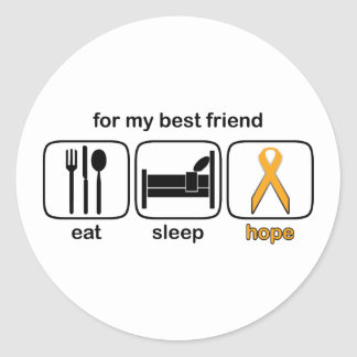 Best Friend Eat Sleep Hope - Leukemia Round Stickers