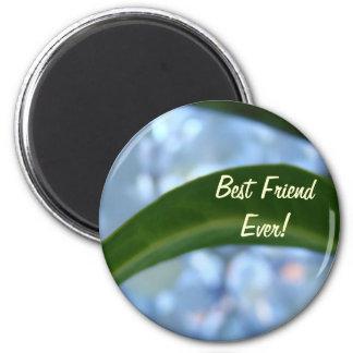 Best Friend Ever! magnet Blue Green Leaf