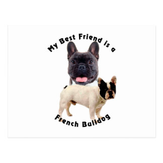 Best Friend French Bulldog Postcard