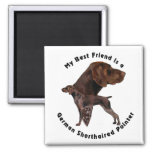 Best Friend German Shorthaired Pointer 2 Inch Square Magnet