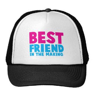 BEST FRIEND in the making Hats