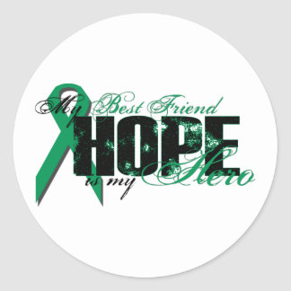Best Friend My Hero - Kidney Cancer Hope Classic Round Sticker