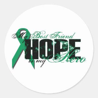 Best Friend My Hero - Kidney Cancer Hope Round Sticker
