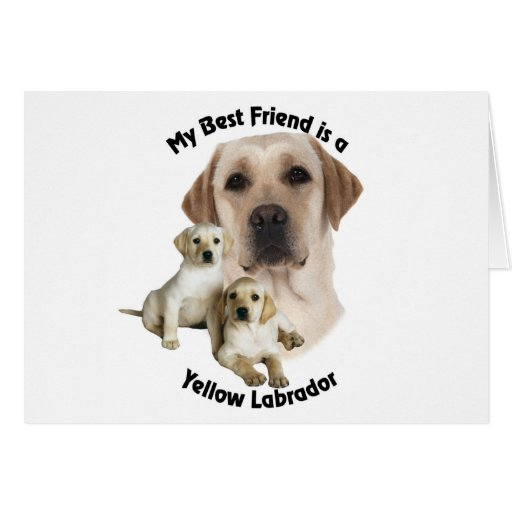 Best Friend Yellow Labrador Cards