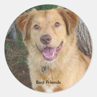 Best Friends2883 Sticker