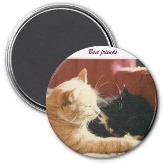 Best Friends 3 Inch Round Magnet