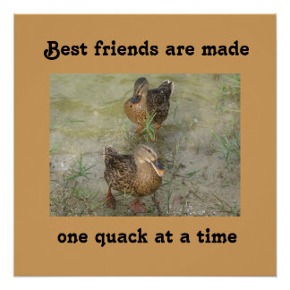 Best friends are made - 20 x 20 Poster