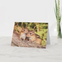 Best Friends Baby Chipmunks Card
