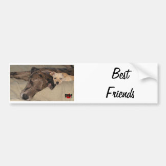 Best Friends Bumper Sticker