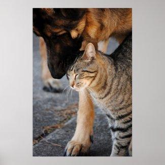 Best Friends- Cat & German Shepherd Print print