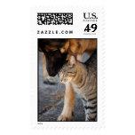 Best Friends- Cat & German Shepherd Stamps