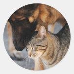 Best Friends- Cat & German Shepherd  Stickers