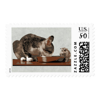 Best Friends Cat & Mouse Sharing Food Bowl Postage
