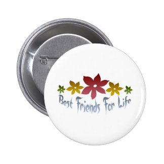 Best Friends For Life Pins