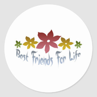 Best Friends For Life Classic Round Sticker