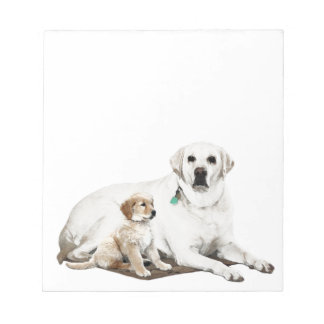 Best friends for life notepad