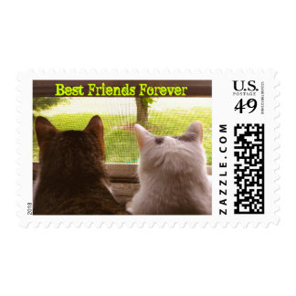 """Best Friends Forever"" Abbie & Momo Postage Stamp"