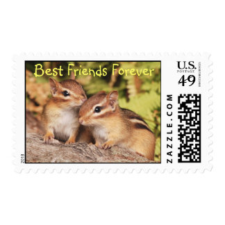 Best Friends Forever Baby Chipmunks Postage