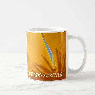 BEST FRIENDS FOREVER Gift Mug POPPIES Flowers