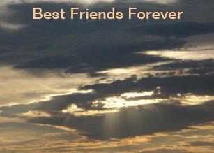 Best Friend Picture Frames Zazzle
