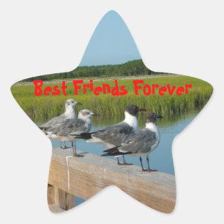 Best Friends Forever Star Sticker