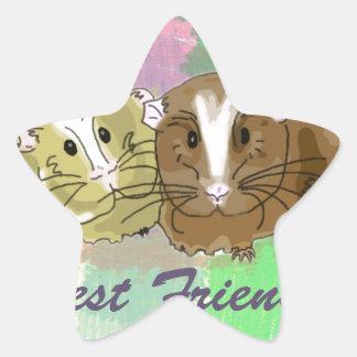 Best Friends Guineapig Design Star Sticker
