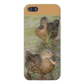 Best Friends, Happy Duck Pair - IPhone, 5/5S Case