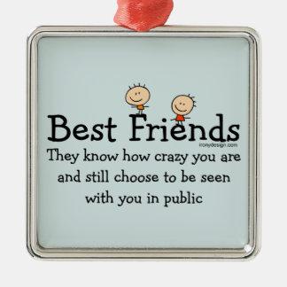 Best Friends Metal Ornament
