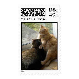 Best Friends! My boys... Postage Stamp
