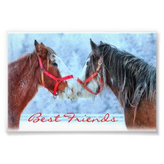 Best Friends Photo Print