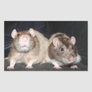 best friends rat stickers