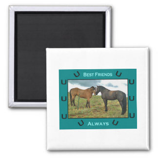 Best Friends sentiment with Horses 2 Inch Square Magnet