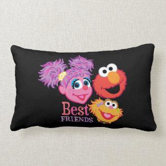 Best Friends Sesame Street Throw Pillow