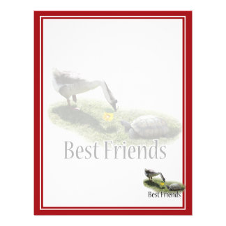 Best Friends - The Turtle & The Goose Flyer