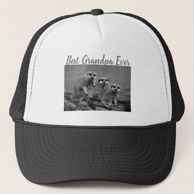 Best Grandpa Ever Photo Gift From Grandkids Grey Trucker Hat
