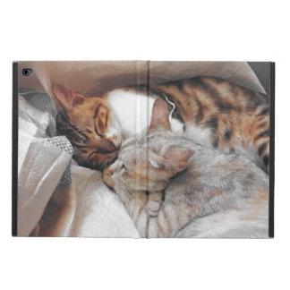 Best Kitty Buddies Powis iPad Air 2 Case