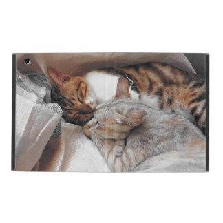 Best Kitty Buddies iPad Folio Case