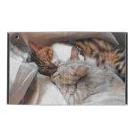 Best Kitty Buddies iPad Folio Cases