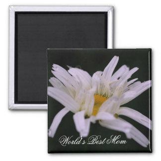 Best Mom White Daisy Flower Photo Magnet