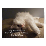 Best New Year Cat Card