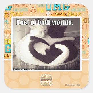 Best of both worlds. square sticker