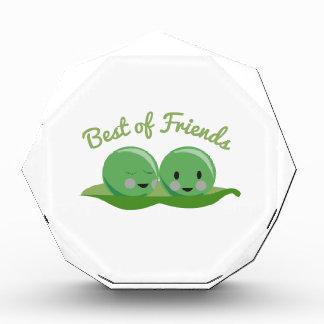 Best Of Friends Award