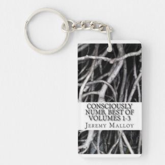 Best Of Volumes 1-3 Rectangle Keychain