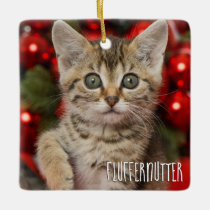 Best Personalized Picture Cat Kitten   Name Photo Ceramic Ornament