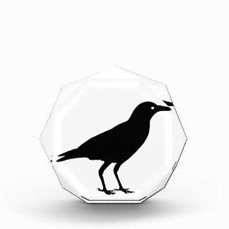 Best Price Black Crow Halloween Bird Decoration Award