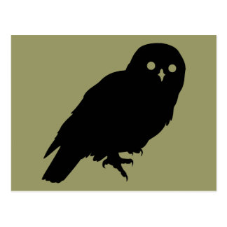 Best Price Owl Lover Postcard