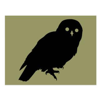Best Price Owl Lover Postcard