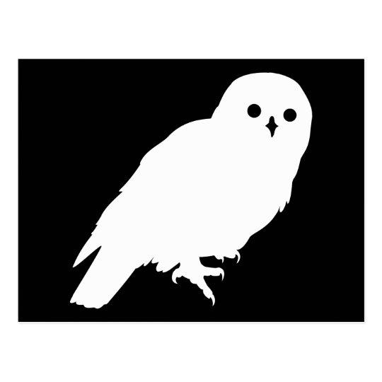 Best Price White Barn Owl Graphic Postcard